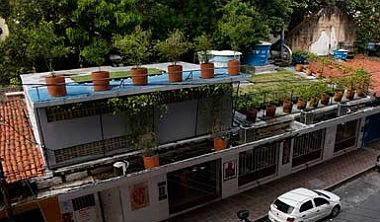 telhado verde - recife